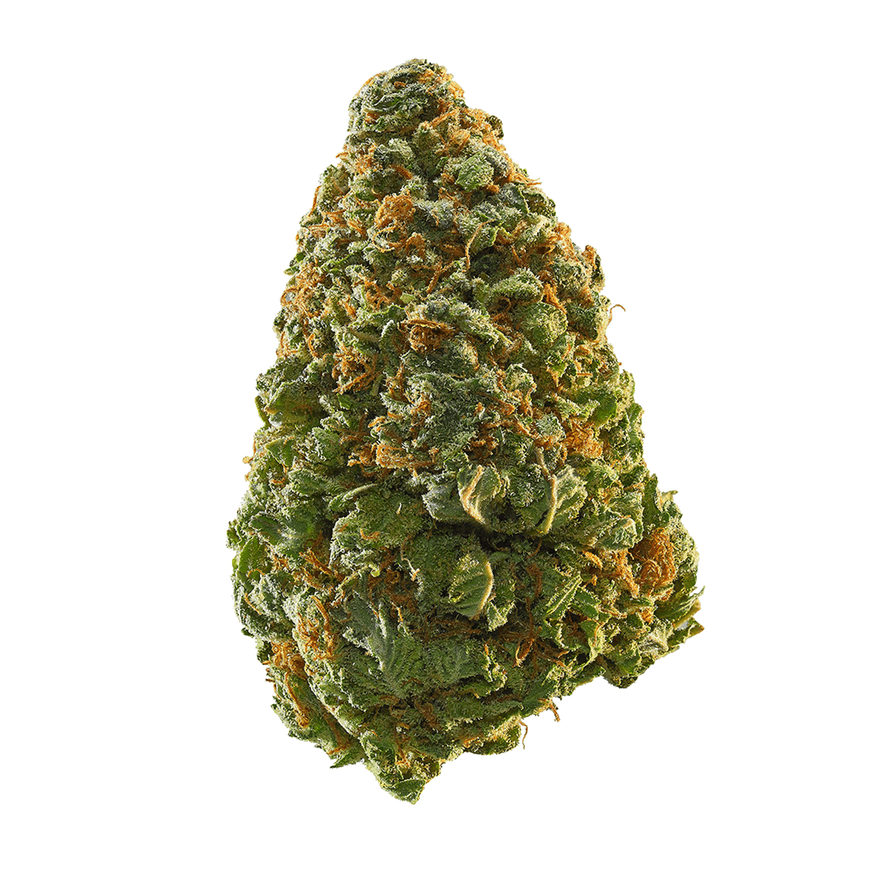 7 Easiest Cannabis Strains to Grow for Beginners