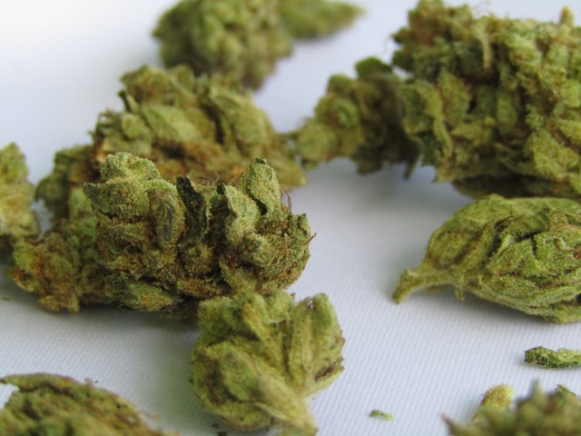 How Long Does Weed Stay Fresh?