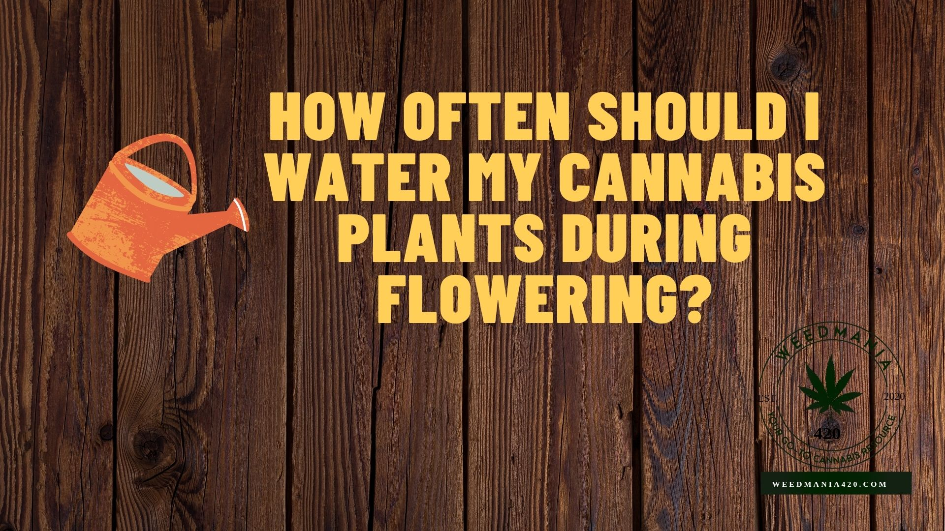 How Often Should I Water My Cannabis Plants During Flowering?