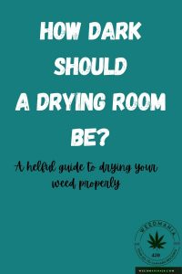How Dark Should a Drying Room Be?